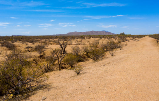 40 Acres in Florence, AZ!