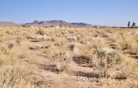 5 Acres in Golden Valley, AZ!