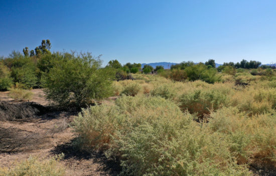 2.28 Acres in Mohave Valley, AZ!