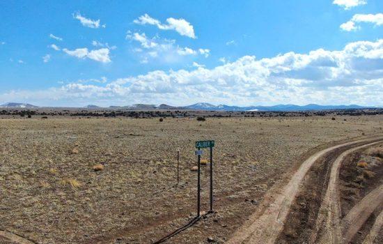 37.3 Acres in Concho, AZ!